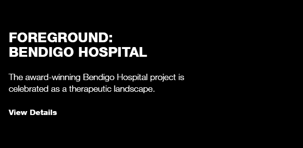 Foreground: Bendigo Hospital